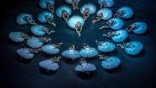 """Красив кадър на чешкия национален балет, изпълняващ балетната постановка """"Лебедово езеро"""""""