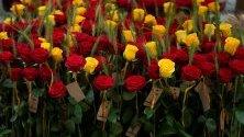 Красив букет от рози в Барселона, Каталуния, Испания. Каталуния днес празнува Гергьовден като според обичая на испанците се подаряват на приятели и роднини рози като подарък.