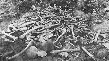 Останки от избити арменци в Ерзинджан. Подобни гледки можели да се видят навсякъде из Армения.