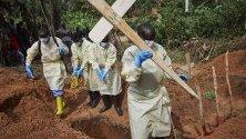 Броят на жертвите от последната епидемия от Ебола, която започна през август 2018 г., се е повишила до над 1000, според Министерството на здравеопазването на страната. Министерството заяви в последната си актуализация от 03 май, че от август 2018 г. има 1 008 смъртни случая от 1 433 потвърдени случая в Конго.