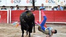 Бик ударя мексиканския тореадор Серджо Флорес по време на панаира Сан Маркос 2019, в Агуаскалиентес, Мексико.