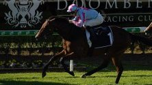 В Австралия се провежда шампионат Moet & Chandon по конно надбягване.