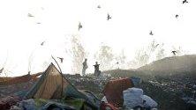 Индийски боклукчии сред боклука в двора на сметището в близост до град Амритсар, Индия преди Световния ден на околната среда. Замърсяването на въздуха и подобряването на качеството на въздуха в градовете по света са тема на Световния ден на околната среда 2019 г., който се отбелязва ежегодно на 05 юни.