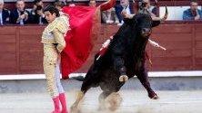Испанският тореадор Алберто Лопес Саймън се бори с бик по време на San Isidro в арената за борба с бикове в Лас Вентас в Мадрид, Испания.