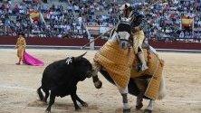 Тореадор яздещ кон в битка с бик на панаир Сан Исидро в Лас Вента,  Мадрид.