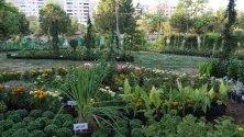 Гледка по време на церемонията по откриването на шоуто с цветя в парк Tishreen в Дамаск, Сирия.