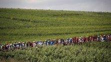 Колоездачи в действие по време на третия етап от 106-то издание на колоездачната надпревара на Тур дьо Франс над 215 км във Франция.