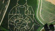 Царевично поле, показващо портрета на Грета Тунберг и надписа Петък за бъдеще във фермата Лунеман в Селм, Германия. Всяка година фермерът Лунеман създава лабиринт в своето царевично поле, свързан с актуалните събития. Тази година това е портрета на Грета Тунберг, шведска активистка, която предизвика движението на студентските стачки Петък за бъдеще.