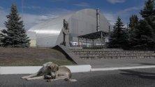 Общ изглед на Чернобилската атомна електроцентрала в Украйна.