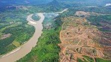Снимка, направена с дрон, показва райони от гори, които са били разчистени за плантации с маслени палми Ачех, Индонезия. Индонезия е най-големият в света производител на палмово масло.