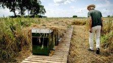 Пчелар наблюдава редица неразрешени кошери в Дордрехт, Холандия.