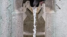 Гълъб пие вода от чешма на площад  в Будапеща, Унгария.