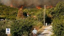Силен горски пожар гори край Измир. Районът се слави с красивите си борови гори, които се издигат недалеч от морския бряг.