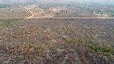 Огромна изгоряла площ от дъждовните гори по Амазонка в щата Мато Гросо, Бразилия. Множество пожари бушуват в региона, като увеличението им е с 84% спрямо миналата година.