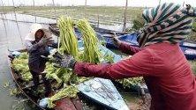 Камбоджанка продава зеленчуци от лодката си в покрайнините на Пном Пен. Премиерът на страната призова хората да произвеждат повече като алтернатива на зеленчуците и плодовете, отглеждани с агрохимикали.