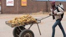 Младеж продава банани от количка в индустриалната зона на Хараре, Зимбабве. С главоломен ръст на безработицата и постоянно фалиращи компании, мнозина прибягват до собствени сили, за да осигуряват насъщния си.