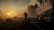 Горски пожар бушува в Калифорния, затворена е една магистрала, има евакуирани. Пожарът гори между Глендейл и Ийгъл Рок в Лос Анджелис.