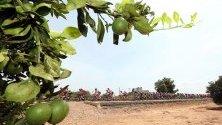 Продължава обиколката на Испания - Vuelta a España.