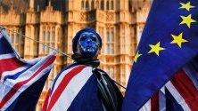 Про-ЕС протестиращ пред парламента в Лондон.