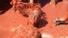 """Участничка в доматената фиеста """"Томатина"""" в Буньол, Испания."""