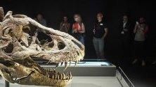 Посетители в новата изложба в музея Naturalis в Лайден, Холандия. Международният институт на знанието беше затворен една година заради мащабна реновация.
