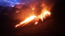 Пожар край Петрич