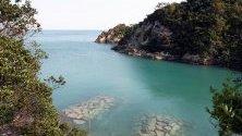 Залив, където делфините биват убивани заради месото им, в Таиджи, Япония. Властите започнаха годишния си лов на делфини в района. Мястото през лятото е популярен плаж.