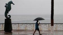 Валежи в Пуерто Вайарта, Мексико, причинени от тропическата буря Лорена.