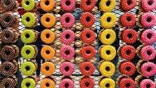 """Разноцветни донъти, изложени по време на панаира """"Anuga"""" в Кьолн, Германия. 7400 фирми от 107 държави участват в 100-ното издание на най-големия панаир на храните в света."""