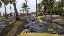 Събран петрол, разлял се по плажа Карнейрос в щата Пернамбуко, Бразилия. Страната е пред екокатастрофа от два месеца заради доплуването на огромни петролни разливи по североизточното й крайбрежие.