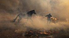 Ранчероси евакуират коне от горящо ранчо край Сими Вали, северно от Лос Анджелис, Калифорния.