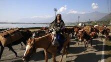 Членове на номадско семейство пренасят вещите си, напускайки долината на Шринагар - лятната столица на Кашмир. Всяка година номадите преминават хиляди километри към по-топли места, където да пасат стадата им.