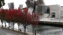 """Обагрени с есенни листа дървета край музея """"Гугенхайм"""" в Билбао."""