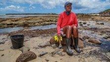 Доброволци помагат за разчистване на петролен разлив по плажа Итапуама, Кабо де Сан Агостиньо, Бразилия. Североизточните брегове на Бразилия са заляти от тонове петрол.
