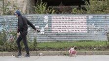 Молдовец разхожда кучето си пред плакати за втория тур на местни избори в Кишинев, Молдова.