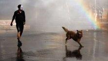 Демонстратор и кучето му по време на протести срещу правителството в Сантяго, Чили.