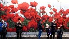 Фенове стоят до гигантски графит на макове преди мач в Английската висша лига в Лестър, Великобритания.