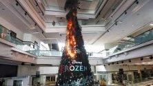 Протестиращи в Хонконг подпалиха коледната елха в мол в града. Протестите продължават шести месец.