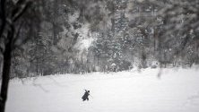 Човек си проправя път през снежните преспи в тиролското село Моос, Австрия. Множество пътища в региона са затворени заради снеговалежи и опасност от лавини.