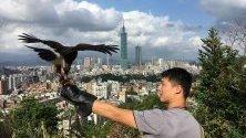 Мъж тренира орела си в Тайпе, Тайван. Според проучването на организацията InterNations, за втори последователен път Тайпе става най-доброто място за живеене и работа в чужбина.