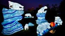 Светлинни фигури, изложени в зоопарка в Кьолн, Германия, част от Фестивала на китайските светлини до 9 януари.
