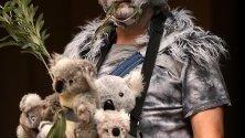 """Протестиращ се е облякъл като коала по време на демонстрация, организирана от Университетски студенти за климатично правосъдие, в Сидни, Австралия. Протестът е под мотото """"Нов Южен Уелс гори, Сидни се задушава"""", по повод горските пожари в региона."""