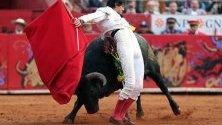 Перуанският тореадор Рока Рей по време на корида с 542-килограмовия бик Аморосо Сантуарио по време на корида в Мексико сити.