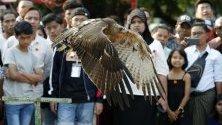 Орел в полет към собственика му по време на изложба на екзотични животни в Янгон, Мианмар.