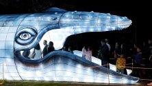 Хора влизат в устата на гигантски кит, изпълнен със светлина, по време на фестивала Brilla Colombia в Богота, Колумбия. Фестивалът се провежда в ботаническата градина до 12 януари.