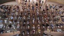"""Стотици пакистански и чуждестранни студенти по религия полагат изпит в джамията """"Бинориа Ааламиа"""" в Карачи, Пакистан."""