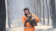 Пожарникарят Саймън Адамчик спасява коала от горските пожари край нос Борда на Острова на кенгурата, Австралия. Близо милиард са вече загиналите животни в страната.