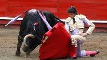 Французинът Себастиан Кастейа се бори с бика Барко по време на панаира в Манисалес, Колумбия.