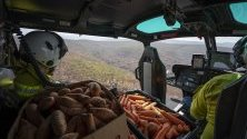 Спасители хвърлят храна на засегнатите от горските пожари диви животни в национален парк в Нов Южен Уелс, Австралия.