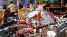 Морска храна изложена на щанд по време на Гастрономическото изложение Madrid Fusion в Мадрид, Испания - най-голямото в света.
